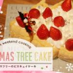 【クリスマスケーキ】こどもと一緒に仕上げる♪クリスマスツリーのビスキュイ christmas tree cake
