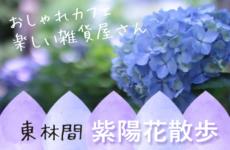 東林間で紫陽花散歩♡アートな雑貨屋さん・かわいいカフェを楽しめる!ノスタルジックな街