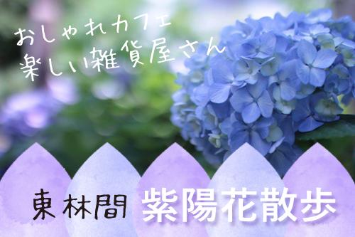 bnr ajisai sanpo higashirinkan2018 - 東林間で紫陽花散歩♡アートな雑貨屋さん・かわいいカフェを楽しめる!ノスタルジックな街