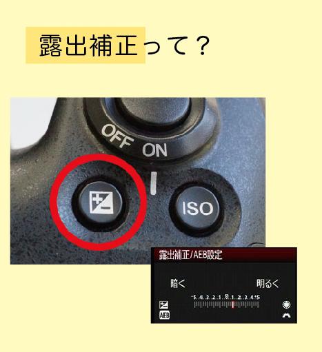 settei rosyutuhosei - 一眼レフカメラ初心者必見!おしゃれ写真のための3つの基本設定