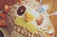 簡単キャラケーキ☆ポケモン★モクローのバースデーケーキ